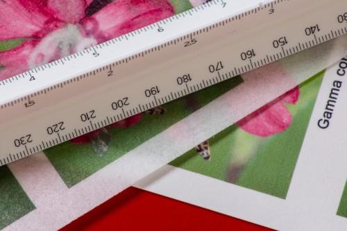 Sammenligning af teksturen på wafer og de luxe sukkerpapir